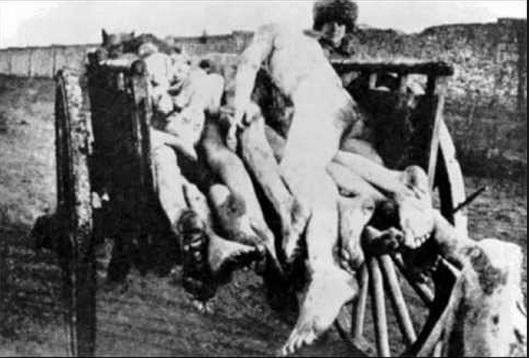HOLODOMOR STALIN's Communist GENOCIDE 12